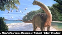 Artist's life reconstruction of the titanosaurian dinosaur Mansourasaurus shahinae on a coastline in what is now the Western Desert of Egypt approximately 80 million years ago is pictured in this undated handout image obtained by Reuters Jan. 29, 2018.