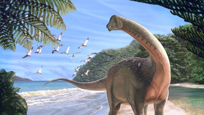 U Egiptu otkrivena nova vrsta dinosaurusa
