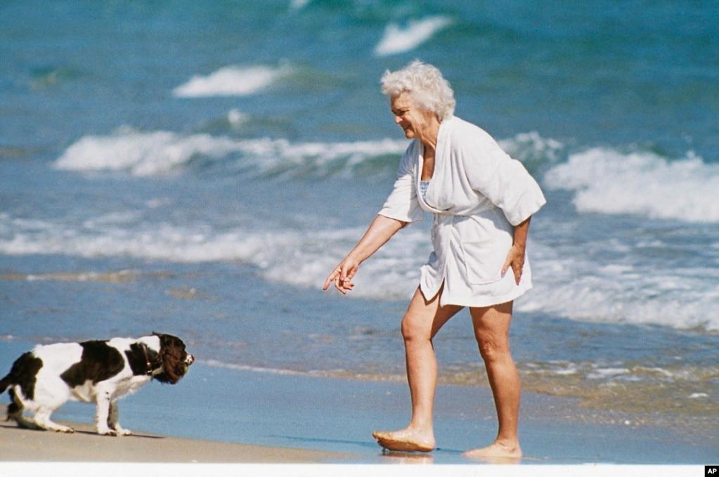芭芭拉·布什(Barbara Bush)和她的愛犬米莉在佛羅里達州的海灘上(照片日期不詳)。
