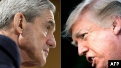 Trump Mueller 20180108