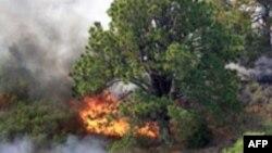 SHBA: Ekspertët paralajmërojnë për zjarre në pjesën jugpërëndimore