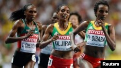 faayil footoo:Xurunesh Dibaba mirga,Belaynesh Oljira jidduu fi Gladys Cherono Keenyaa dorgommii bara 2013