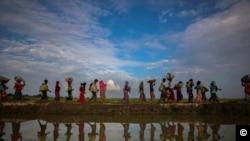 罗兴亚人2017年11月被迫逃亡孟加拉国(路透社)