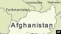 افغانستان او د ګاونډیو هیوادونو اندیښنې