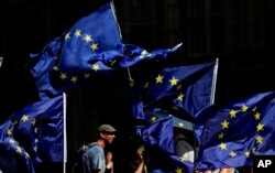 Anti Brexit protestors wave their flags opposite Parliament in London, Thursday, Aug. 29, 2019.