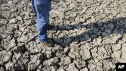 La peor sequía en 50 años afecta ya a dos tercios del país.