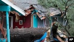 Una de las víctimas murió al caer un gran árbol sobre la habitación en que dormía, en Portland, Oregon.