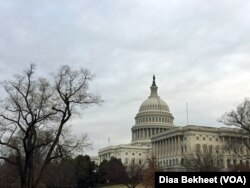 The U.S. Capitol Hill building in Washington, DC.(Diaa Bekheet)