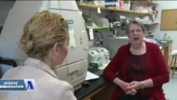 Gwen Sancar: 'En İyi Kanser Araştırma Merkezlerinden Biri Burada'