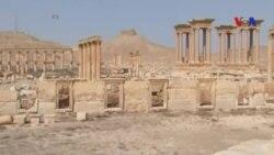 Bắt đầu công tác phục hồi Palmyra