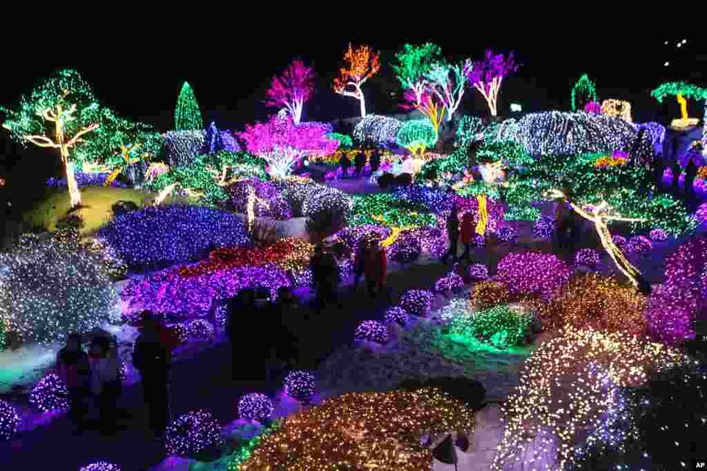 Dekorasi pohon-pohon dengan cahaya warna-warni untuk merayakan Natal di taman kota Gapyeong, Korea Selatan.