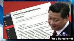 无界新闻网转载倒习公开信(美国之音电视节目截频图)