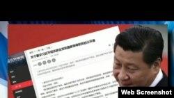 海彥香港 無界新聞網轉載倒習公開信(美國之音電視節目截頻圖)