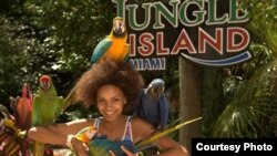 Parrots are still the stars of the show at Jungle Island, especially when it comes to interacting, quite loudly, with visitors. (Courtesy, Jungle Island)