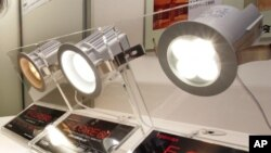 """FILE - High-efficiency LED light bulb """"E-CORE"""", shown at the 17th Toshiba Group Environmental Exhibition in Tokyo. A street light retrofit is expected to lead to a significant conservation of energy in India and reduce its carbon footprint."""