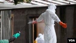 د ایبولا اوسنۍ بڼه په تاریخ کې ددې ویروس تر ټولو خطرناکه بڼه بلل شوې ده.