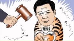 火墙内外: 薄熙来受审大戏开台