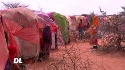 Wanawake wazidi kunyanyapaliwa Somaliland