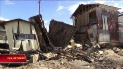 Nhật: 66 người chết vì bão Hagibis