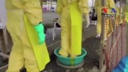 West Africa Finally Ebola-Free