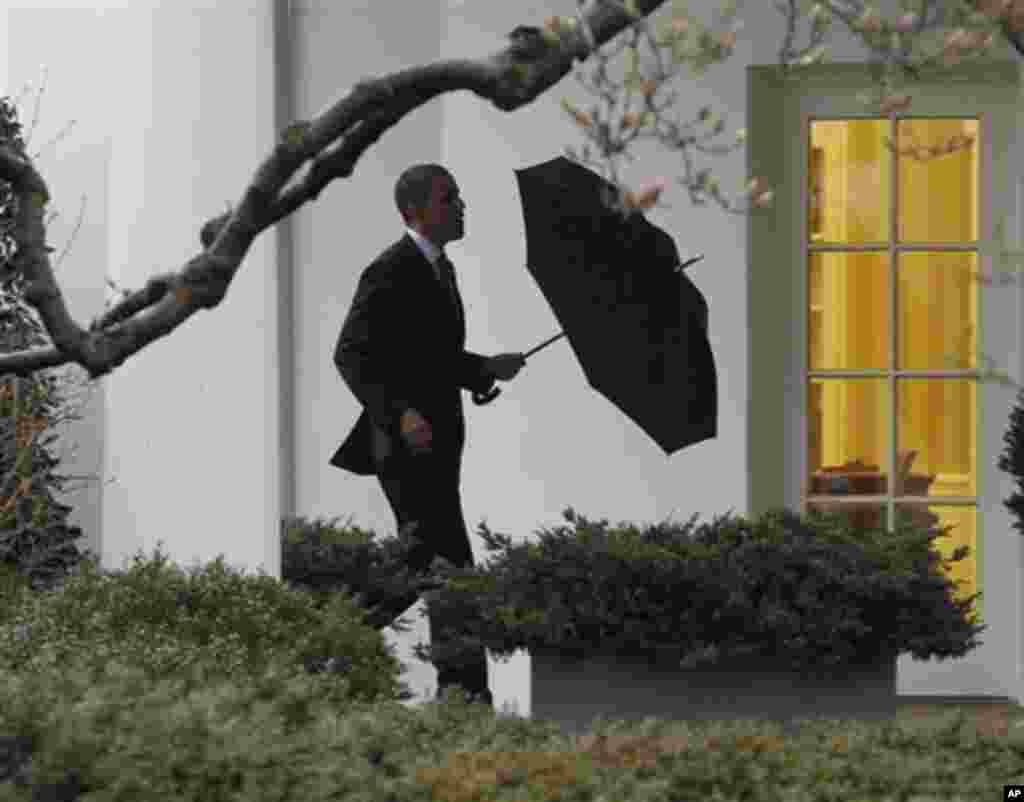 President Barack Obama walks back to the Oval Office of the White House in Washington, Friday, March, 2, 2012. President Barack Obama has paid his first visit of the year to wounded troops from the wars in Iraq and Afghanistan at the Walter Reed National
