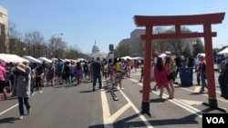 The 58th Annual Sakura Matsuri Japanese Street Festival