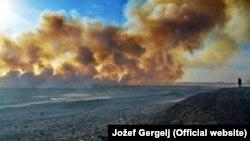 Požari u Vojvodini ove jeseni naneli su veliku štetu biljnom i životinjskom svetu, Foto: Jožef Gergelj
