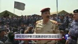 伊拉克对伊斯兰国激进组织发动反攻