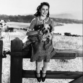 "Elizabeth Taylor in 1944 while filming ""National Velvet"""