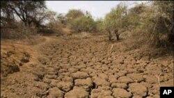 بلوچستان میں بارشوں کی کممی سے زیر زمین پانی کی ذخائر ختم ہورہے ہین اور زمیں بجنر ہوتی جا رہی ہے۔فائل فوٹو