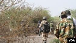 L'armée nigérianne mène une offensive contre la milice Boko Haram dans le nord du Nigéria