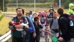 Macaristan'a Göçmen Akını Rekor Düzeye Ulaştı