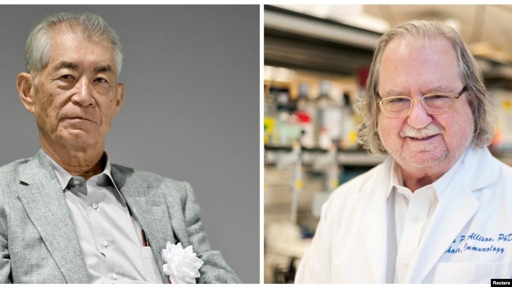 Shpallen fituesit e çmimit Nobel në Mjekësi