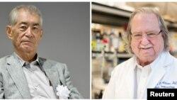 Hai nhà khoa học Tasuku Honjo, người Nhật, và James P. Allison, người Mỹ, đoạt giải Nobel Y học năm 2018.