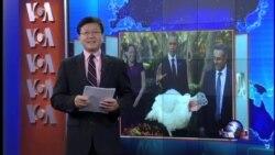VOA卫视(2015年11月26日 第一小时节目)