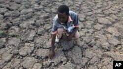 Kekeringan di Afrika menjadi salah satu penyebab utama kelangkaan pangan dan kelaparan (foto: ilustrasi).