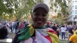 Zvimwe Zvizvarwa zveZimbabwe Zvakavhota Musarudzo YemuAmerica Zvofarira Kukunda KwaVa Joe Biden Vebato Rema Democrats