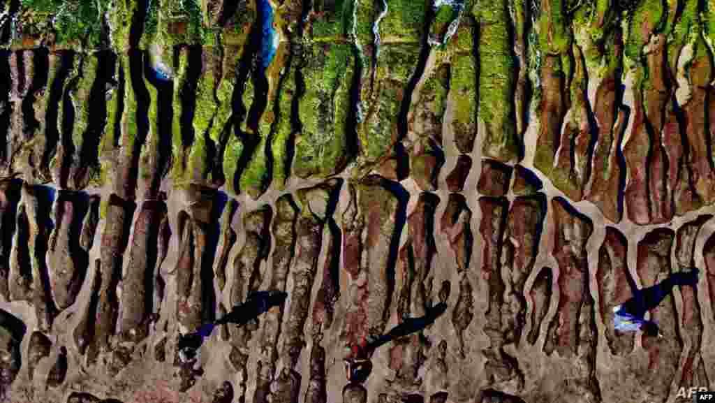 타이완 라오메이의 그린 암초에 녹조류가 끼어 있다.