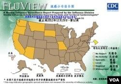 美国流感活动分布图(2012年第52周)