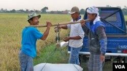 Indonesia disarankan menggantikan skema beras untuk warga miskin (raskin) dengan pembayaran uang tunai. (VOA/R. Teja Wulan)