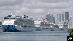 Cruise ships are docked at PortMiami, Tuesday, March 31, 2020, in Miami. The U.S. Coast Guard said Tuesday that it's working with Holland America on a detailed docking plan that would require two ships carrying passengers and crew from an ill-fated cruise to handle all medical issues without impacting South Florida's already-stressed hospitals. (AP Photo | Wilfredo Lee)