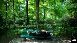 """Một góc công viên Tiergarten, nơi Đức cáo buộc Việt Nam """"bắt cóc"""" ông Trịnh Xuân Thanh."""
