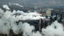 China Carbon Market