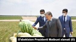 O'zbekiston Prezidenti Shavkat Mirziyoyev Namangan viloyatida, 2020-yil, 26-iyun
