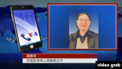 美國之音衛視介紹對胡德華的專訪時所用的畫面(2016年4月11日)