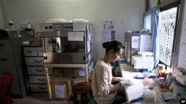 Malaria researcher Sornsuda Setaphan prepares blood samples at hospital in Pailin, Cambodia (file photo)
