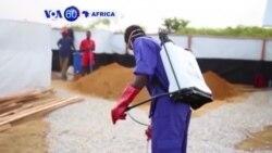 Abantu barenga 500 Bamaze Kwicwa n'Icyorezo cya Cholera muri Kongo