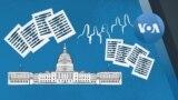 Explainer Contempt of Congress