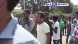 Manchetes Africanas 22 Maio 2015