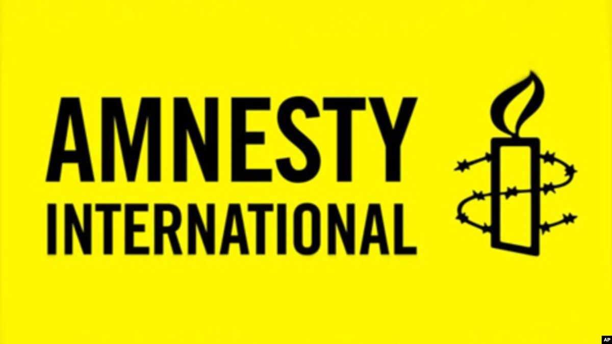 a case study of the amnesty international and its official website